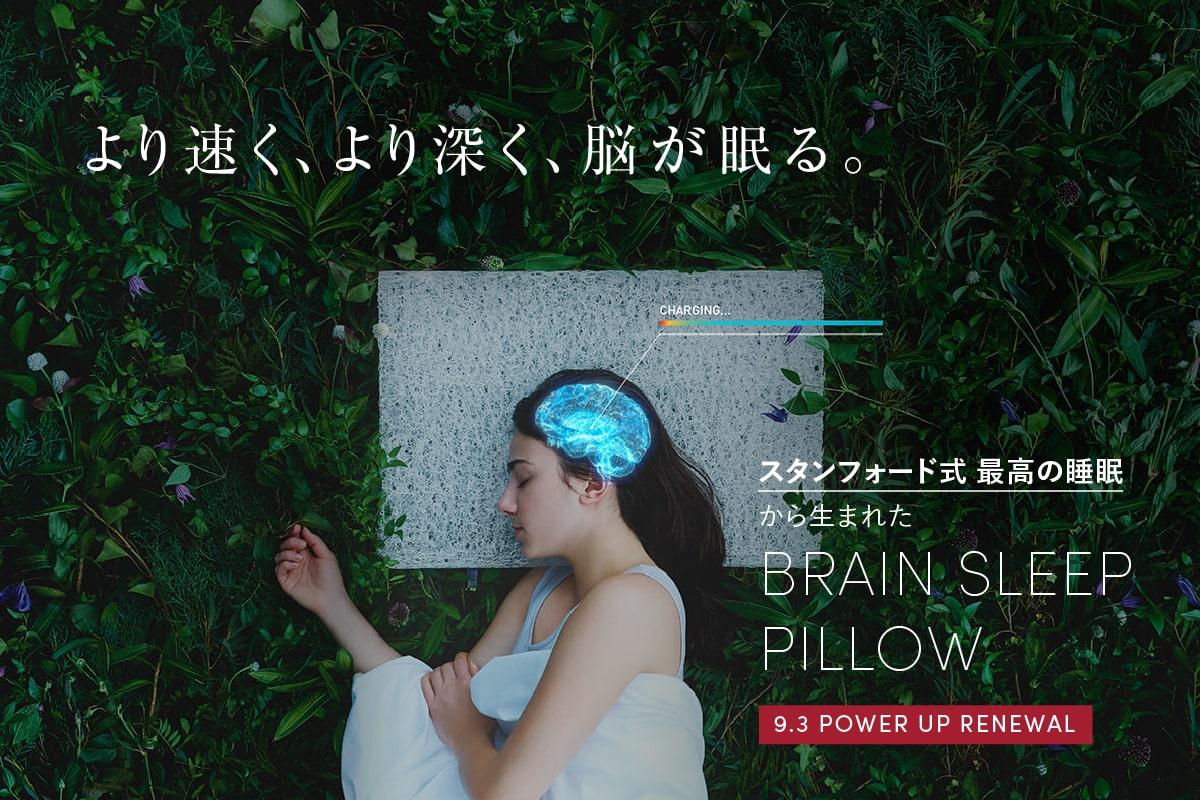 スタンフォード式 最高の睡眠から生まれた BRAIN SLEEP PILLOW